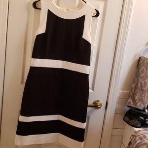 White House Black Market Dress 10 NWT